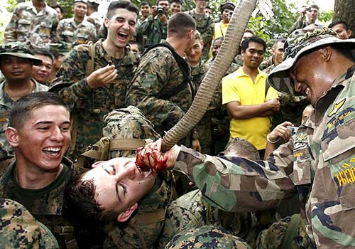 An American marine drinks the blood of a cobra