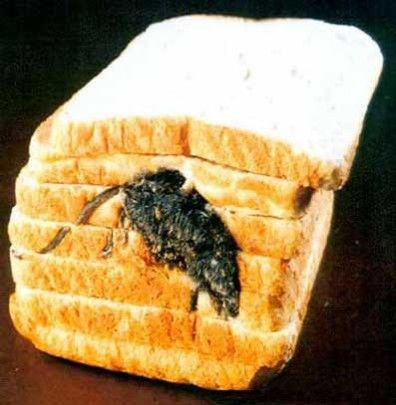 Mouse toast