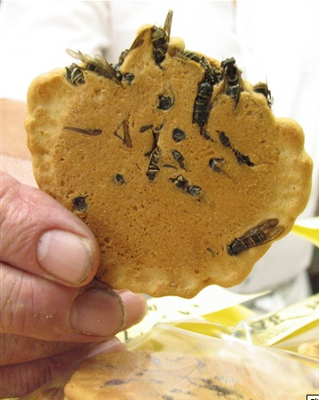 Wasp crackers